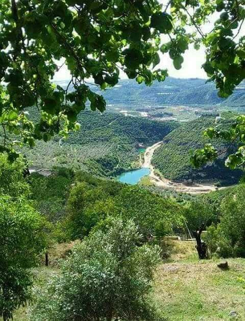 Pure Nature of Tartous Countryside