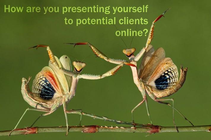 online_presentation.png